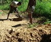 Vign_creusage_du_puits